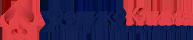 Лого на феникс клима